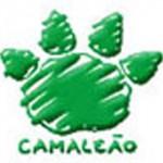 camaleão 2012